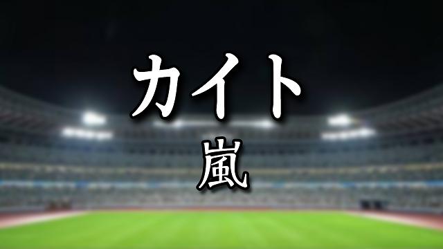 カイト / 嵐-ARASHI-